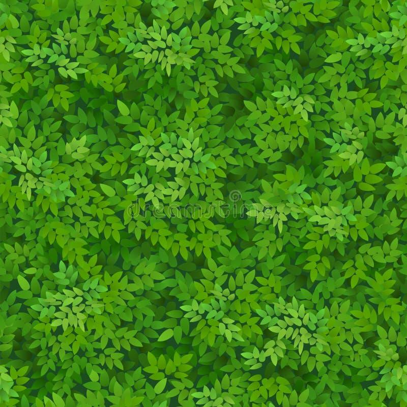 Modelo verde inconsútil del follaje El verde deja el fondo Decoración floral ilustración del vector
