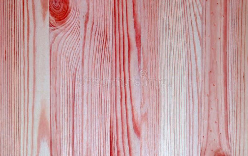 Modelo vertical del rojo brillante con la superficie de madera coloreada rosa de la pared para el fondo imagen de archivo libre de regalías