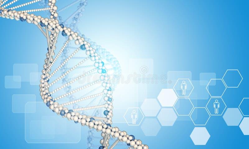 Modelo y hexágonos de la DNA con los iconos de la gente ilustración del vector