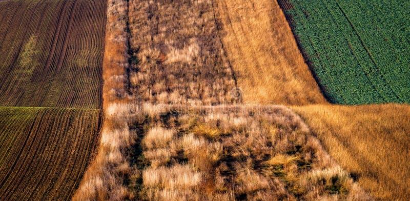 Modelos asombrosos de la raya en los campos agitados de los colores del sur de Moravia, verdes y marrones del otoño imagen de archivo