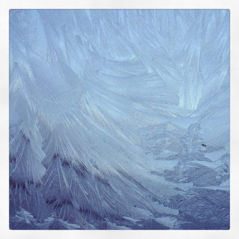 Modelos de Frost fotografía de archivo