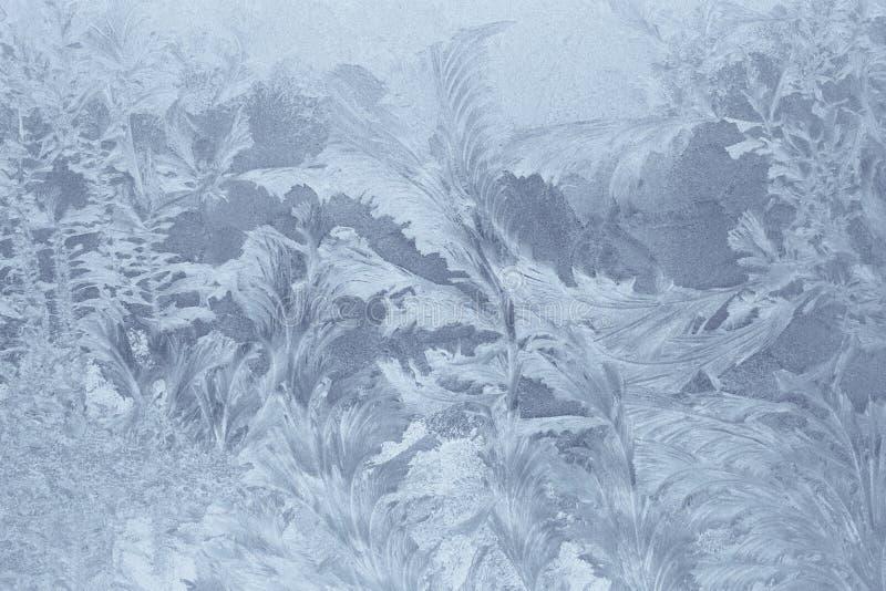 Modelos del hielo fotografía de archivo libre de regalías