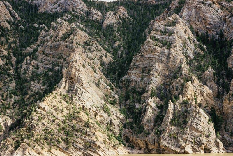 Modelos en formaciones en Yellowstone imágenes de archivo libres de regalías