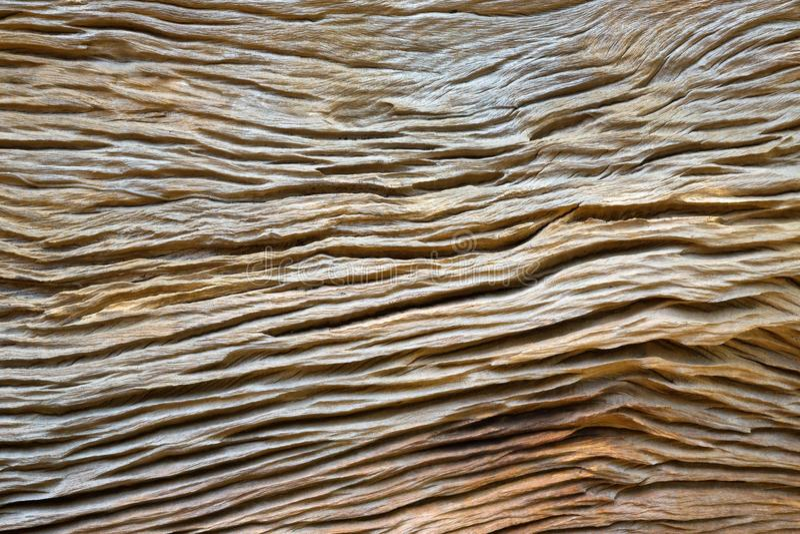 Modelos y texturas de la madera foto de archivo