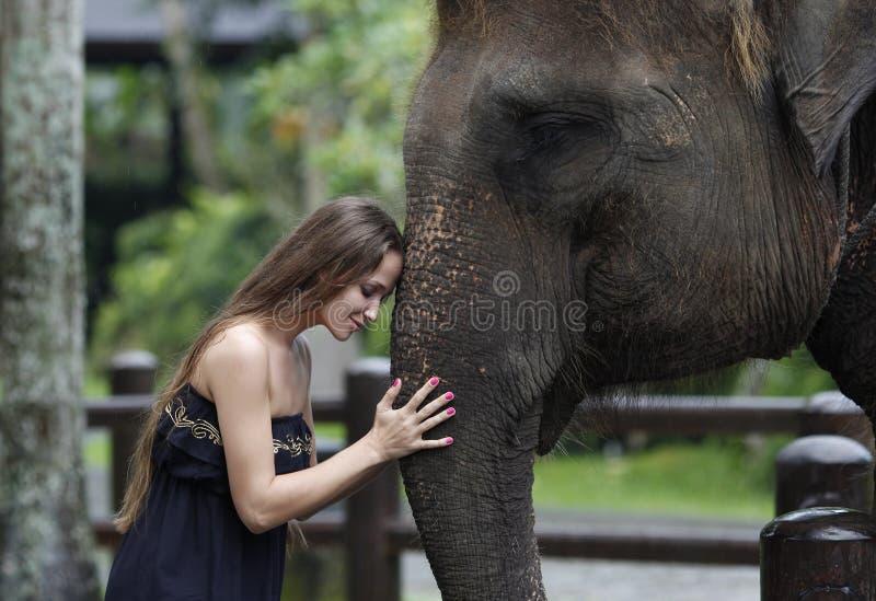Modelvrouw die een grote olifant koesteren stock afbeelding