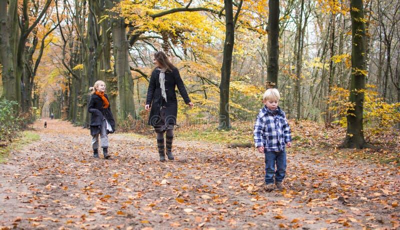 Moder med barn i skog royaltyfria bilder