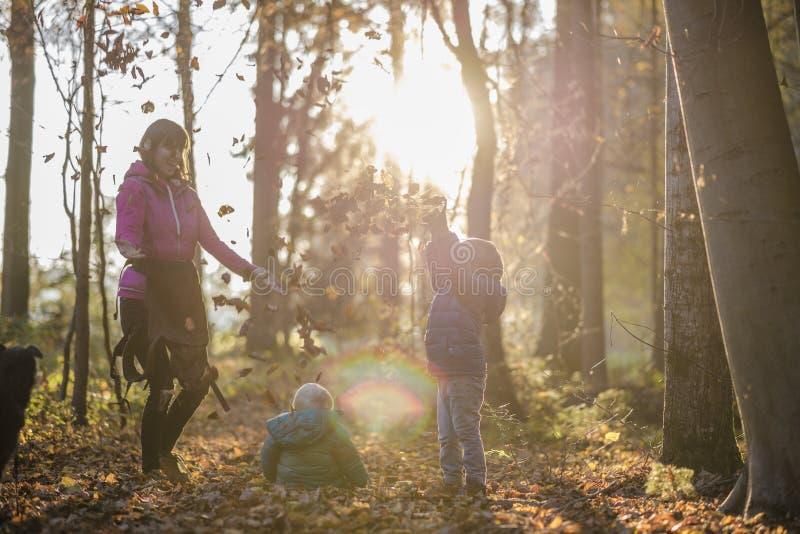 Moder med hennes två ungar som har gyckel i kasta för höstskog arkivfoto