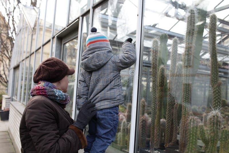 Moder med sonen på botaniska trädgården royaltyfria foton