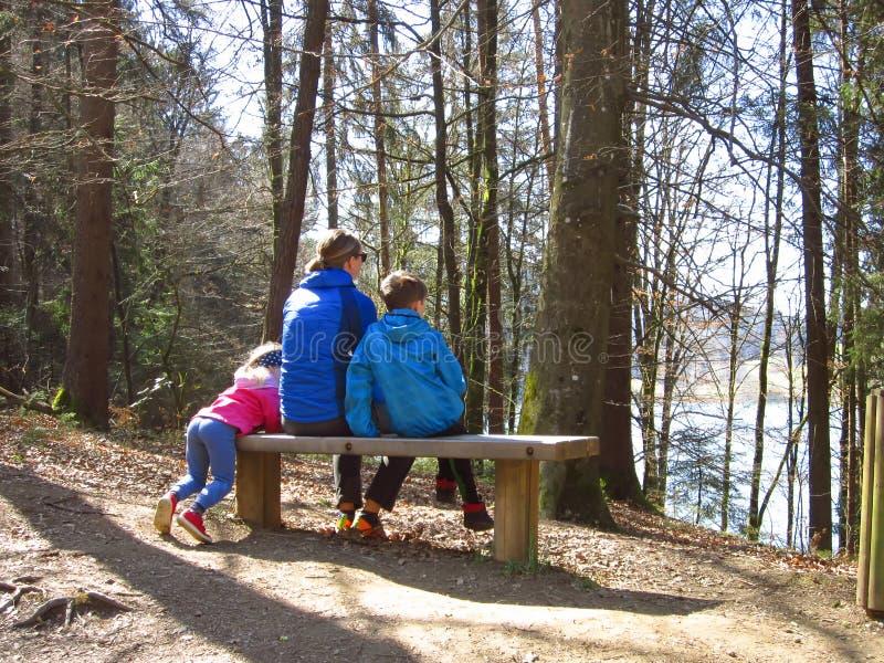 Moder med ungar som fotvandrar i skog fotografering för bildbyråer