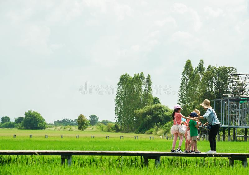 Moder och döttrar på trägångbanan i grönt fält för ris på coffee shop i Kanchanaburi Thailand royaltyfri bild