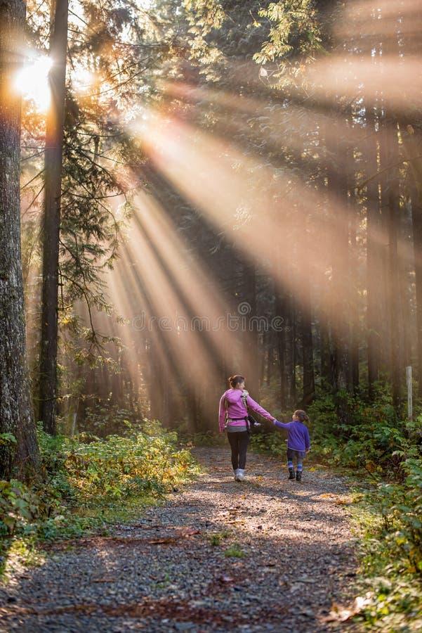 Moder och dotter som går i en skog royaltyfri fotografi
