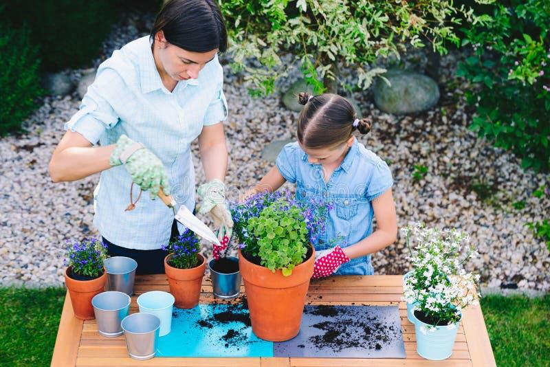 Moder och dotter som planterar blommor i krukor i trädgården - begrepp av att arbeta tillsammans, closeness royaltyfria bilder