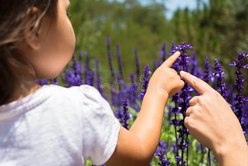 Moder och dotter som spelar i ett blommafält liten flicka som lär om blommor nyfiken natur tycka om utomhus fotografering för bildbyråer