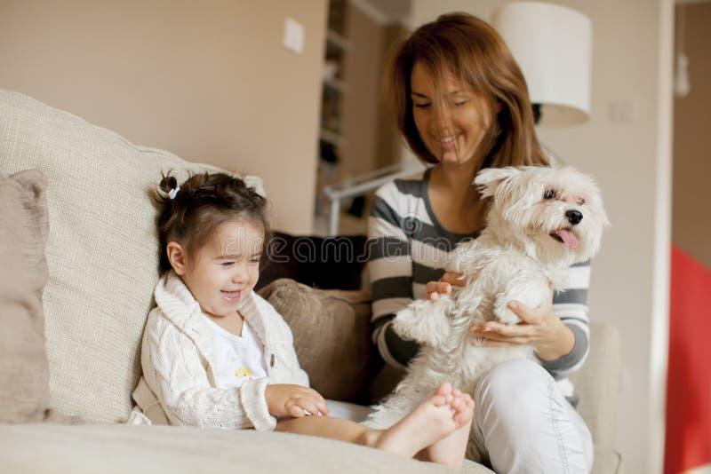 Moder och liten flicka med hunden i rummet royaltyfri fotografi