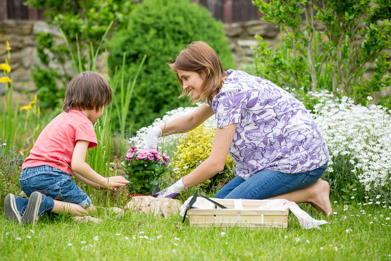 Moder och son som tillsammans arbeta i trädgården i deras lilla trädgård royaltyfria bilder