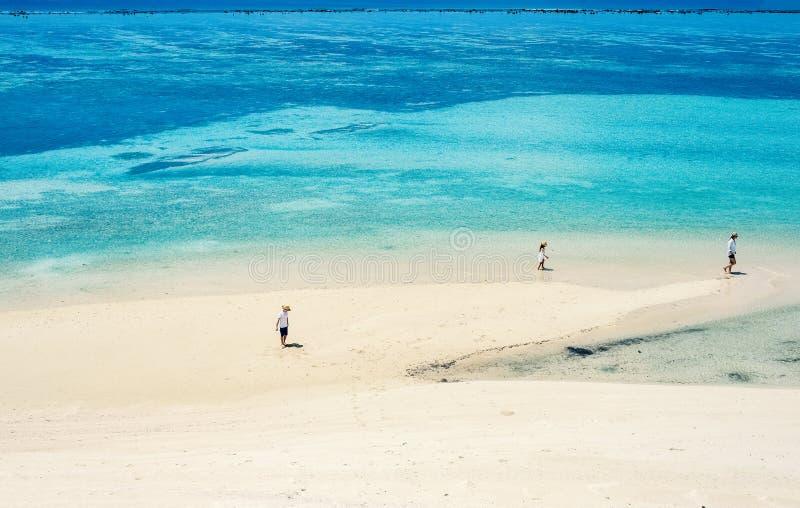 Moder och ungar på den tropiska stranden royaltyfri bild