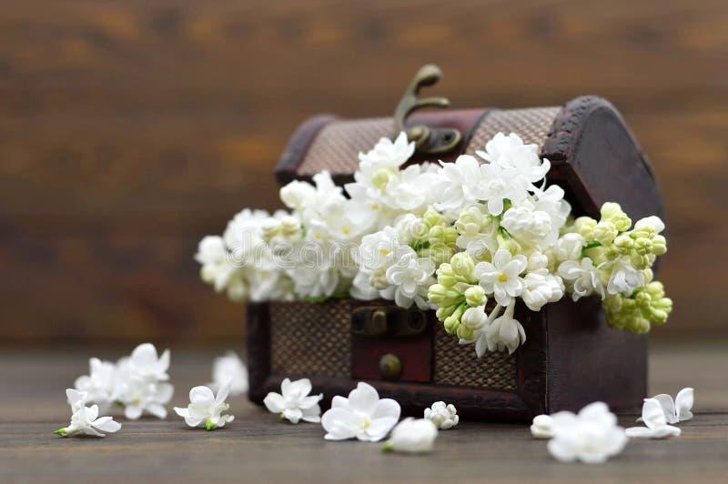 Moderdagen blommar i träbröstkorgen arkivbilder