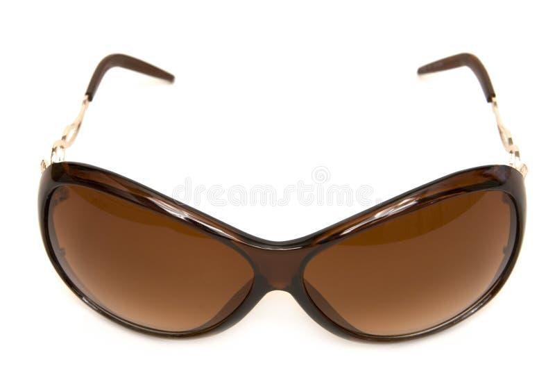 moderiktig solglasögon fotografering för bildbyråer