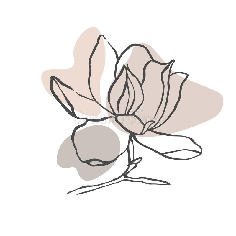 Modern abstract shapes vector background or layout. Contour line drawing flower of magnolia.  Modern minimalism art, aesthetic con stock illustration