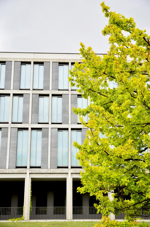 Modern architecture building full of windows. Point of view of a modern building with windows from the garden which surrounds it stock photos