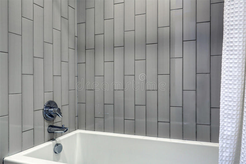 Modern badkamersontwerp die grijze verticale doucherand kenmerken stock afbeelding