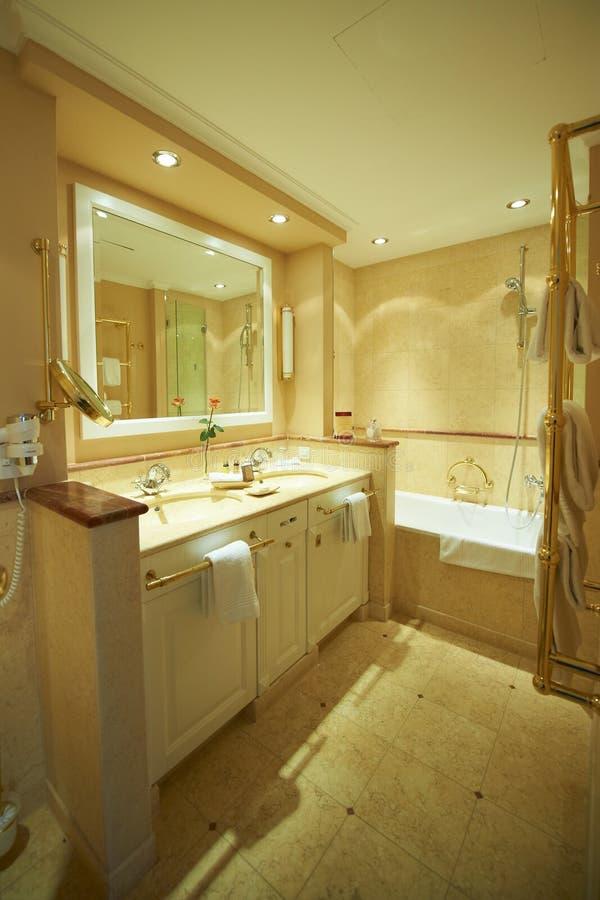 Modern badrum i brunnsort arkivbild