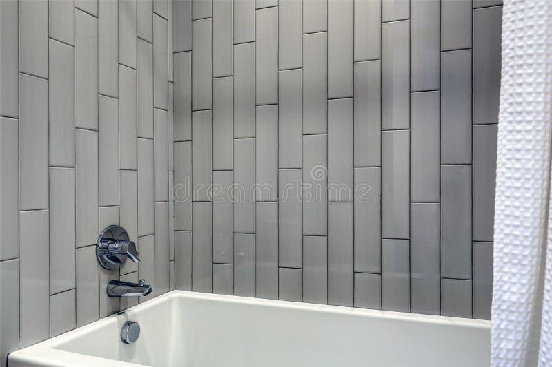 Modern badrumdesign som presenterar grå vertikal duschsurround fotografering för bildbyråer