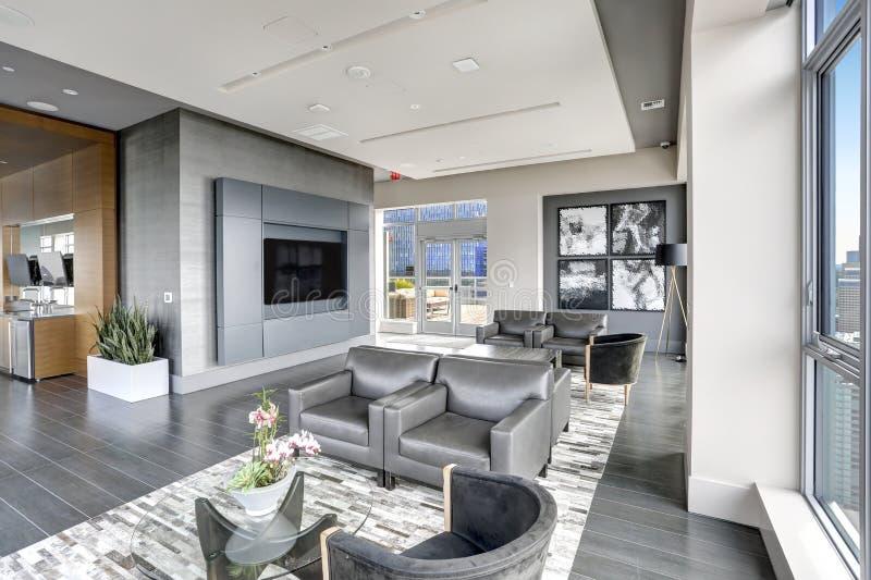 Modern binnenlands ontwerp van het leven gebied in grijze kleuren stock afbeelding