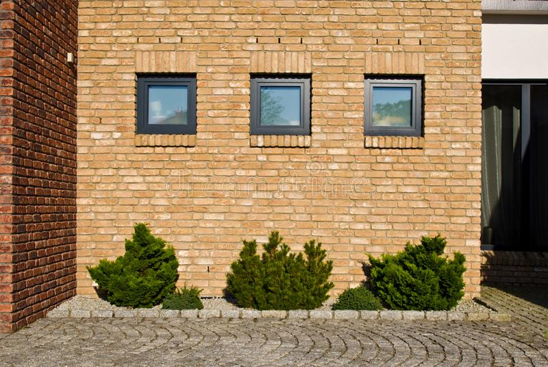 Modern brick wall with evergreen plants design royalty free stock image