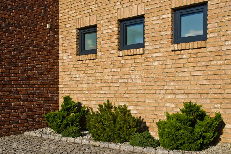 Modern brick wall with evergreen plants design royalty free stock photo