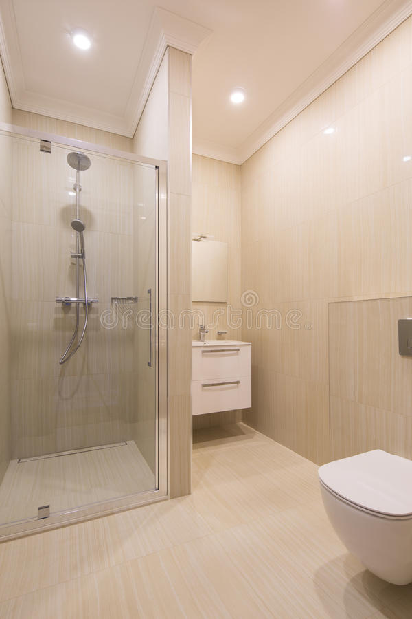 modern brunnsort för badrum royaltyfri foto
