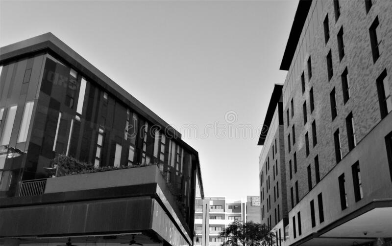 Modern building in Monterrey, Mexico. Black and white view, facades, windows, finishes stock images