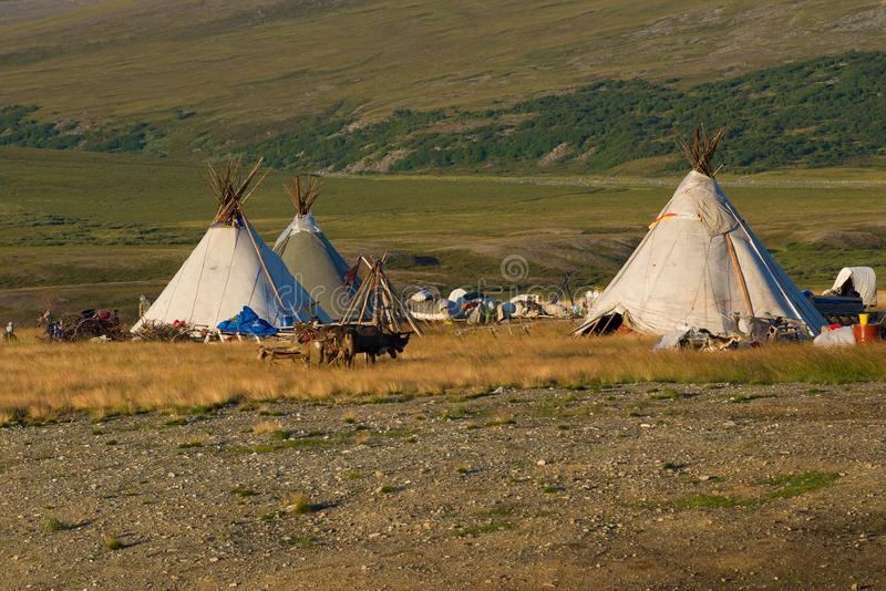 A modern camp of reindeer herders on the August day. Yamal, Russia royalty free stock photos