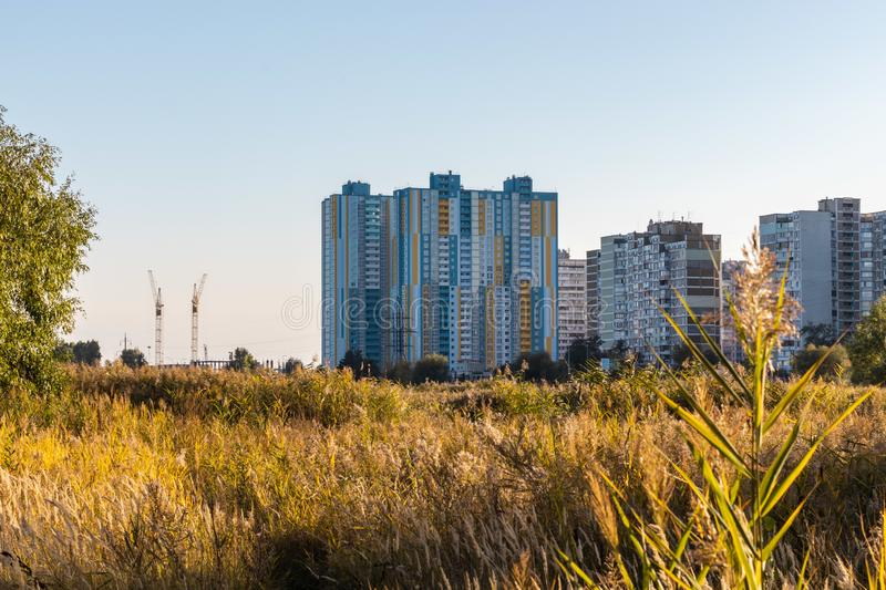 Modern city buildings behind a reed field on a lake. Urban industry and nature landscape royalty free stock photo