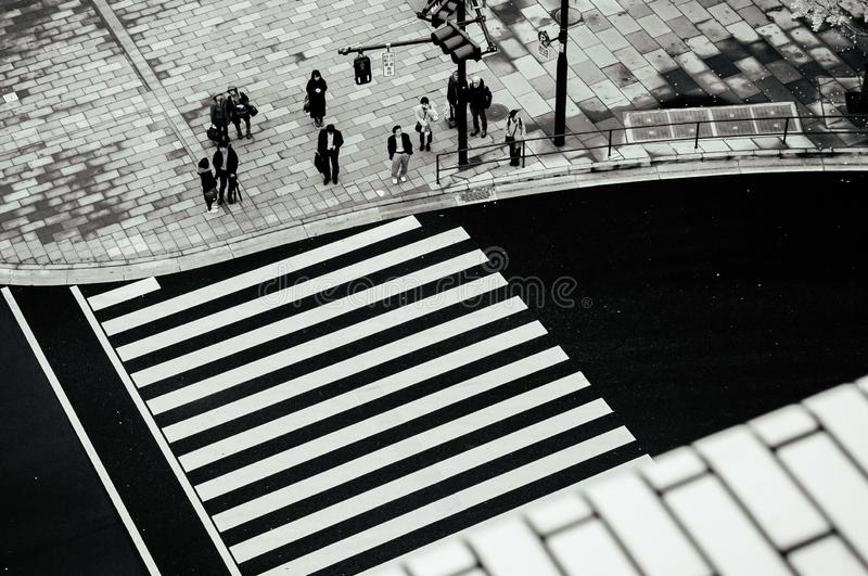 Modern city pedestrain crosswalk from aerial view. Street photo of Tokyo - Japan royalty free stock images