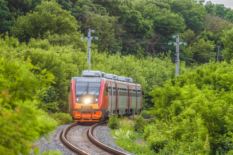 Modern commuter passenger red train is traveling along a single-track railway. Rolling stock with a searchlight on the turn of the railway among green trees royalty free stock images