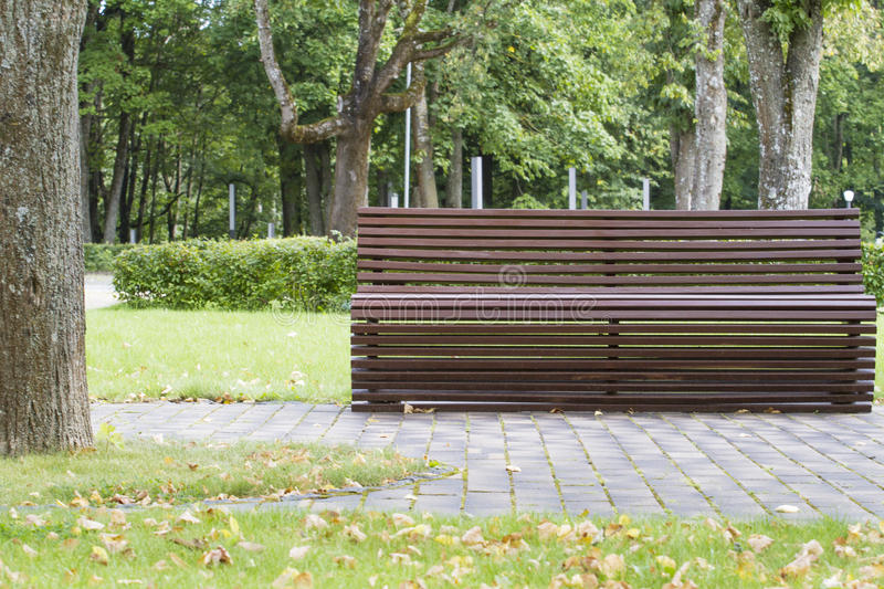 Modern curve shaped wooden bench under old and tall trees in the park as background image stock image