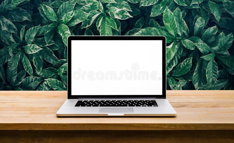 Modern dator, bärbar dator med den tomma skärmen på tabellen med det gröna bladet royaltyfri bild