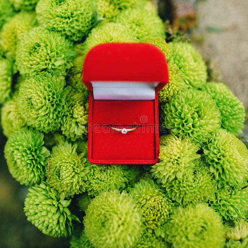 Modern diamond engagement ring in red jewellery royalty free stock photography