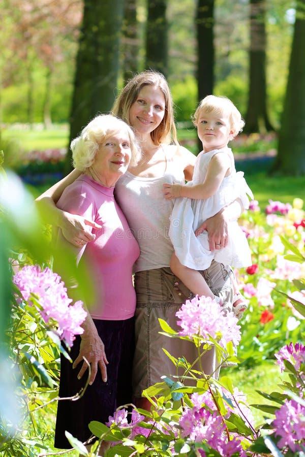 Modern, dottern och farmodern som tycker om, går i parkera royaltyfria foton