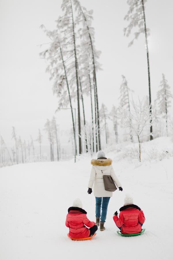 Modern drar hennes två döttrar på pulkan - vinterdag royaltyfri foto