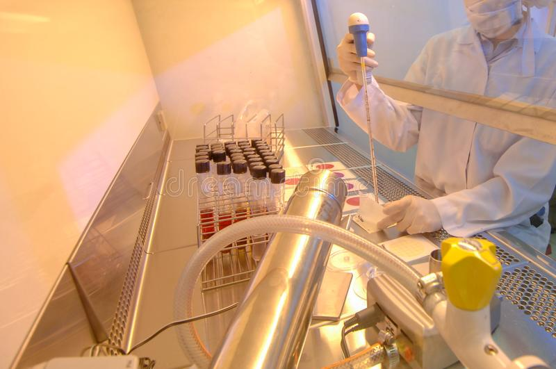 Modern Food Laboratory with Scientist stock image