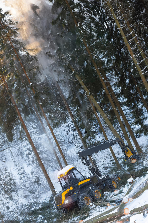 Free Modern Forestry Machine In A Winter Forest Stock Images - 85438834