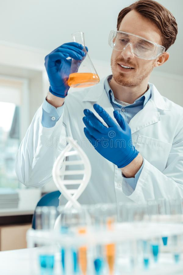 Joyful smart scientist doing a scientific research. Modern genetics. Joyful smart scientist smiling while doing a scientific research in the lab stock images