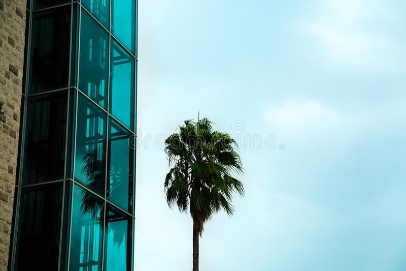 Modern glass building against blue sky. Abstract detail contemporary architecture. royalty free stock photography