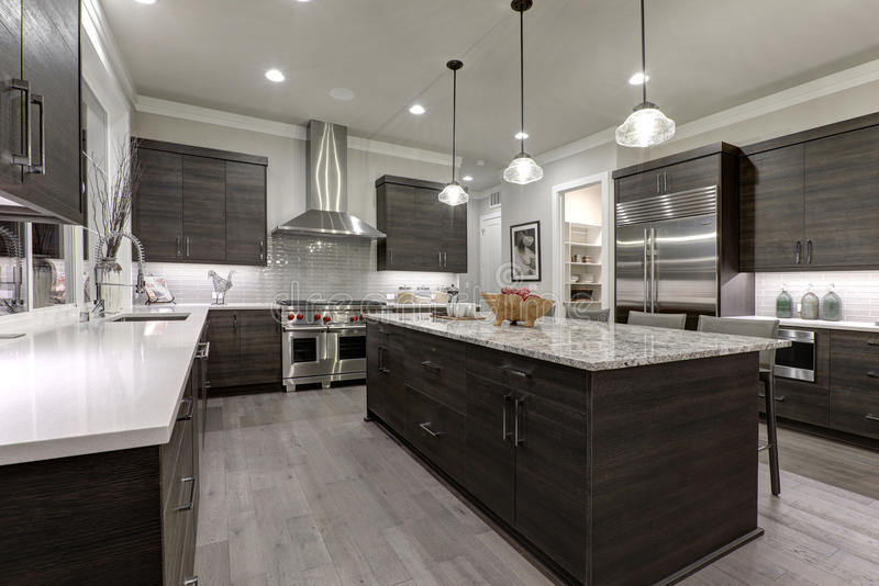 Modern gray kitchen features dark gray flat front cabinets paired with white quartz countertops. And a glossy gray linear tile backsplash. Northwest, USA stock image