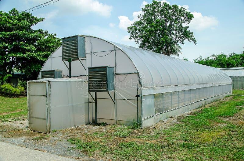 Download Modern green house stock photo. Image of organic, nursery - 33589944