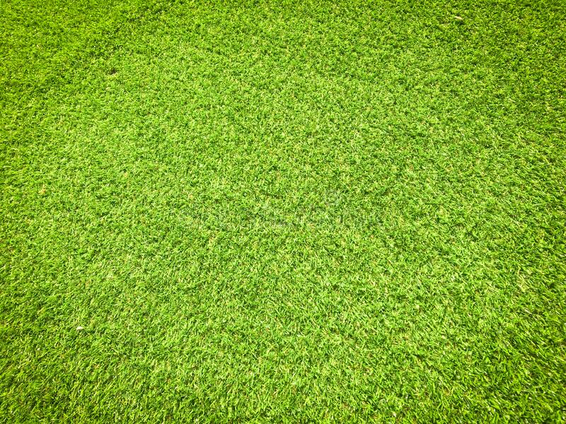 Modern green lawn texture background. Wallpaper for work and design royalty free stock photo