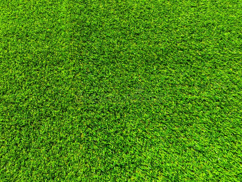 Modern green lawn texture background. Wallpaper for work and design royalty free stock images
