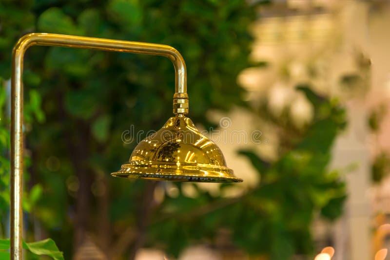 Modern guld- stil för tappning för garnering för duschbadruminre royaltyfri bild